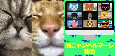 fs200427_01_01.jpg