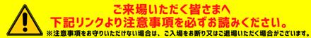 応援スタイル注意fs201129_01_02.png